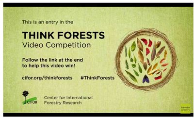 Think Forests
