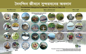 poster on Sundarbans