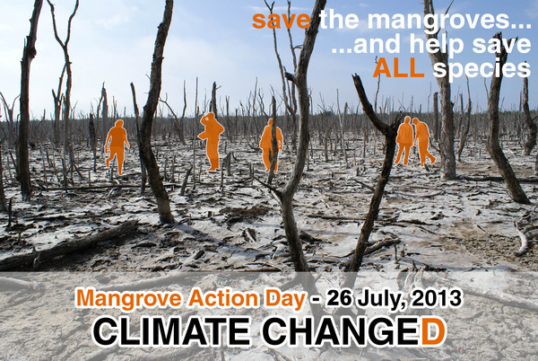 MANGROVE_ACTION_DAY_lowres 2