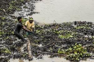 Sundarbans oil Spill 2014